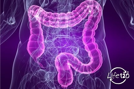 l alterazione della flora batterica dell intestino causa la disbiosi intestinale